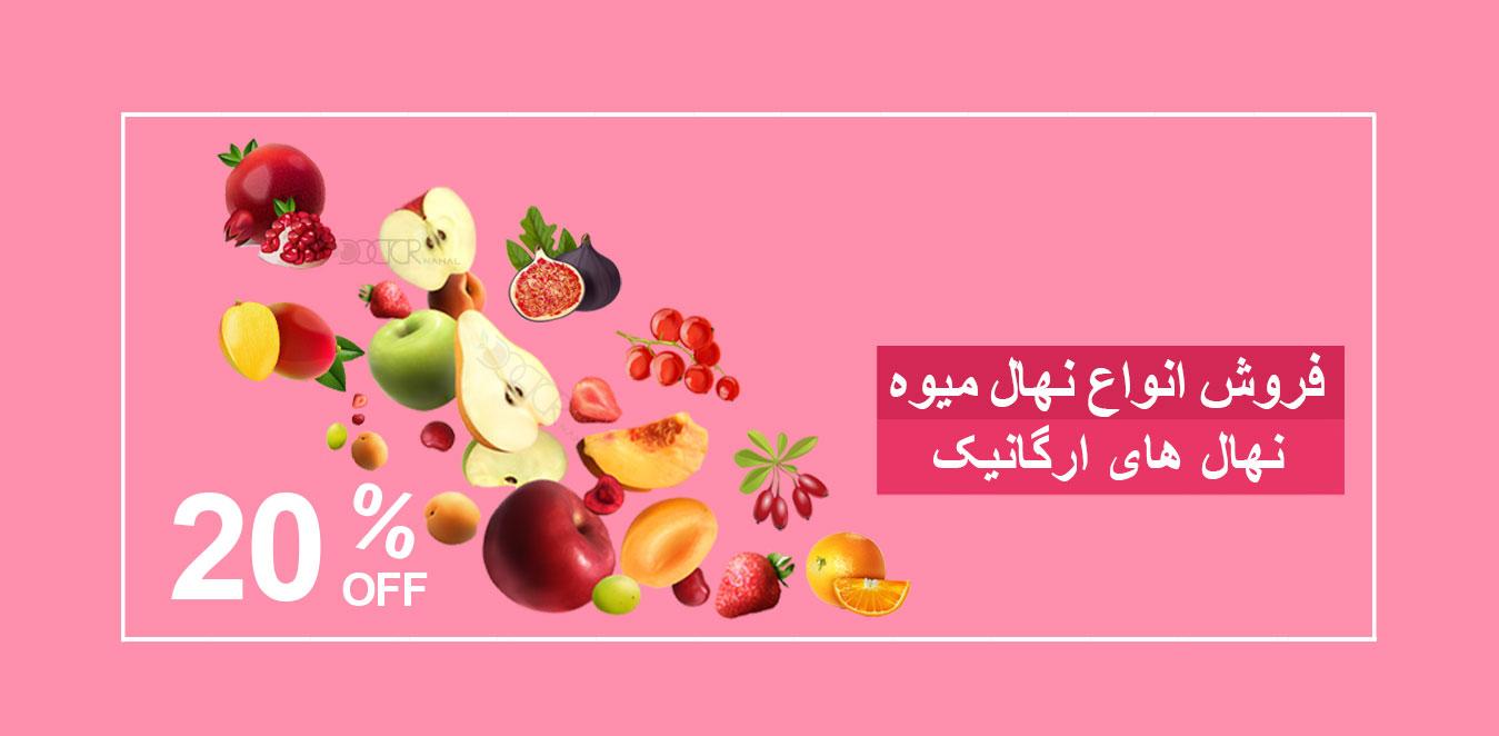 خرید نهال میوه